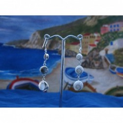LE 0020 Earrings Shiva Eye Shell Silver