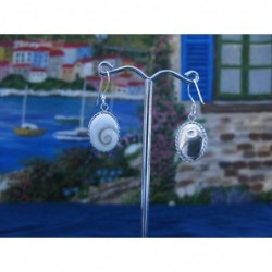 LE 0028 Earrings Shiva Eye Shell Silver