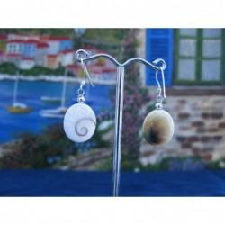 LE 0102 Earrings Shiva Eye Shell Silver