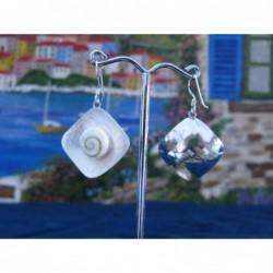 LE 0110ro Earrings Shiva Eye Shell Silver