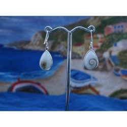 LE 0118 Earrings Shiva Eye Shell Silver
