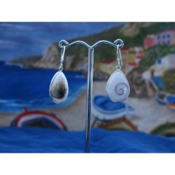 LE 0177 Earrings Shiva Eye Shell Silver
