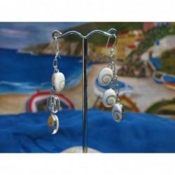 LE 0188 Earrings Shiva Eye Shell Silver