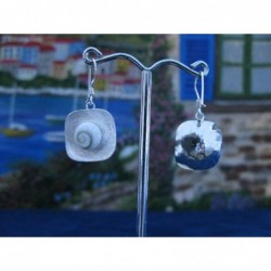 LE 0202sq Earrings Shiva Eye Shell Silver