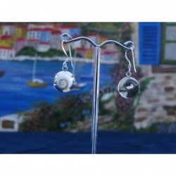 LE 0249 Earrings Shiva Eye Shell Silver