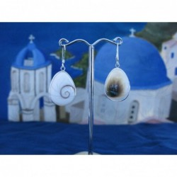 LE 0258 Earrings Shiva Eye Shell Silver