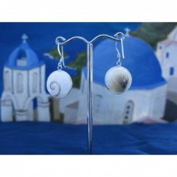 LE 0273 Earrings Shiva Eye Shell Silver