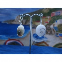 LE 0281 Earrings Shiva Eye Shell Silver