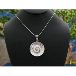 SP 0008 Pendant Shiva Eye Shell Silver
