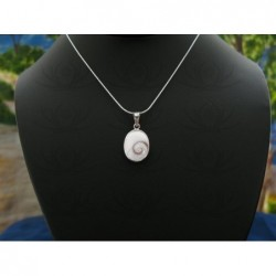 SP 0190 Pendant Shiva Eye Shell Silver