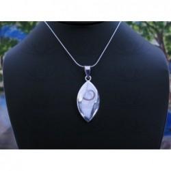 SP 0347 Pendant Shiva Eye Shell Silver