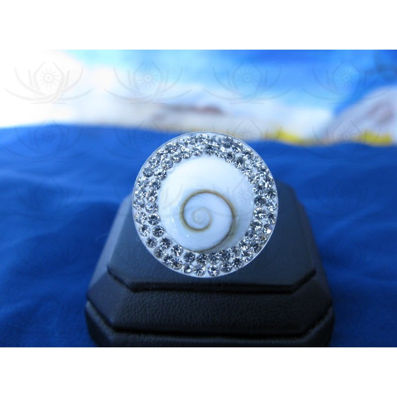 SR 0012 Ring Shiva Eye Shell Silver