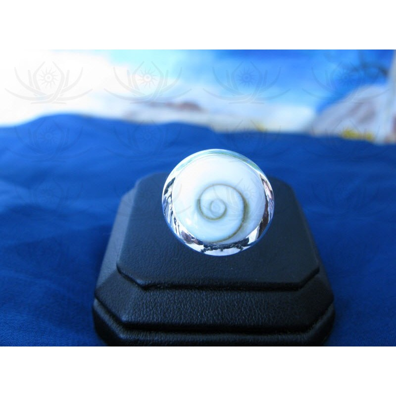 SR 0028 Ring Shiva Eye Shell Silver