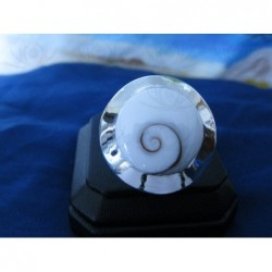 SR 0043 Ring Shiva Eye Shell Silver