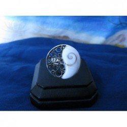 SR 0050 Ring Shiva Eye Shell Silver
