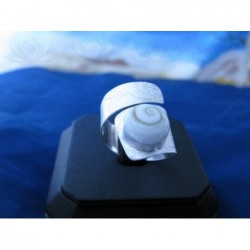 SR 0099 Ring Shiva Eye Shell Silver
